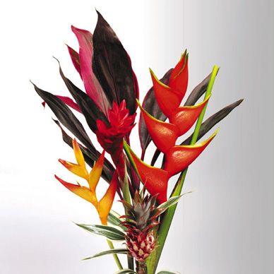 Bouquet SM