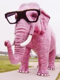Eléphant rose à lunettes