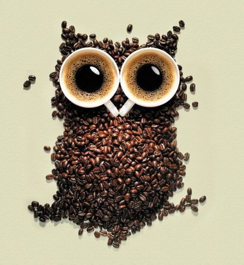 Addicted to coffee and owls rule imho ^^