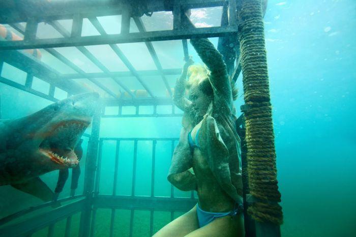 Shark Thriller 3D