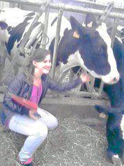 moi avec une vache a château-salins ya 6 mois