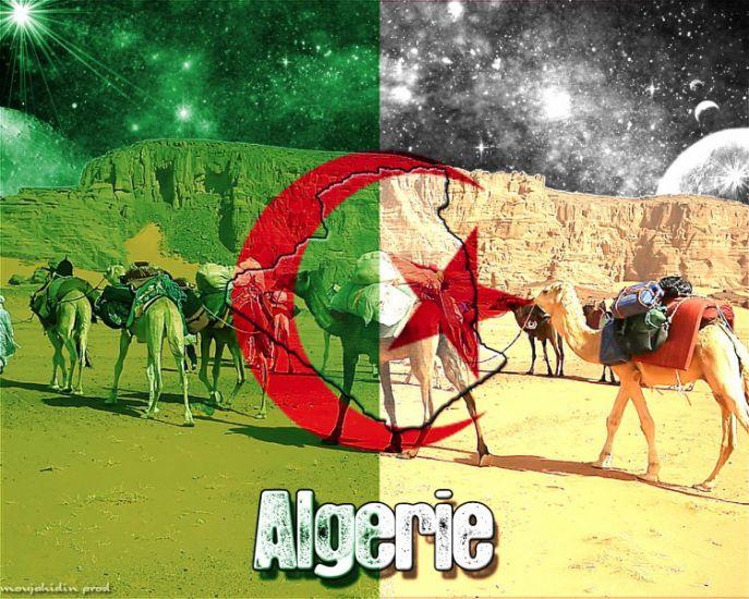 100% Kabyle mektoube.fr 2013 facebook paris  dsk jsk algerie