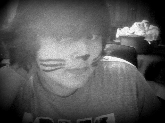 Yes, I'm a cat.