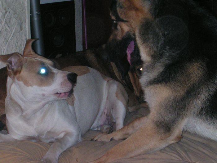 Kira et Fletcher