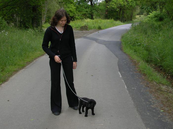 c moi et mon chien