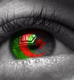 Algeria 4 life