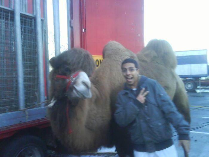 Camel et moi xD