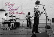 Sweet Drunk Butterflies
