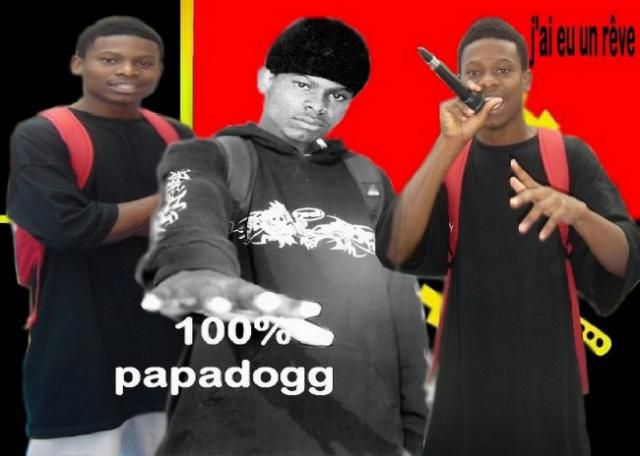 papadogg