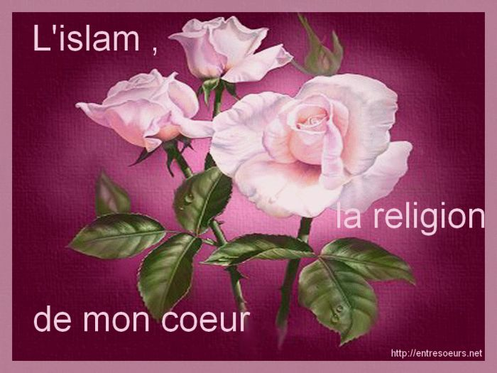 L'Islam la religion de mon Coeur