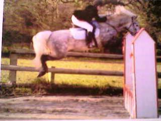 I believe I can fly. tu sais voler? moi SI!!