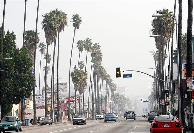 Los Angeles xD