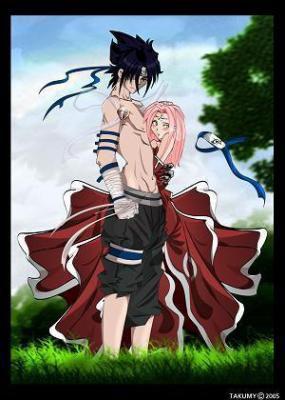 my and sakura