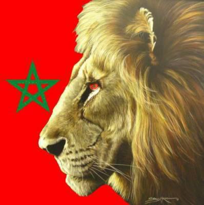POUR TT CEUX KI ONT LA RAGE§§ COMME LE LION DL'ATLAS!!!