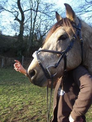 moi ac le tete de mon cheval préféré