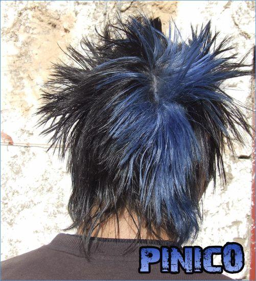 pinico