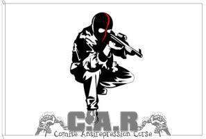 c.a.r.