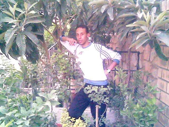jardin d,amour