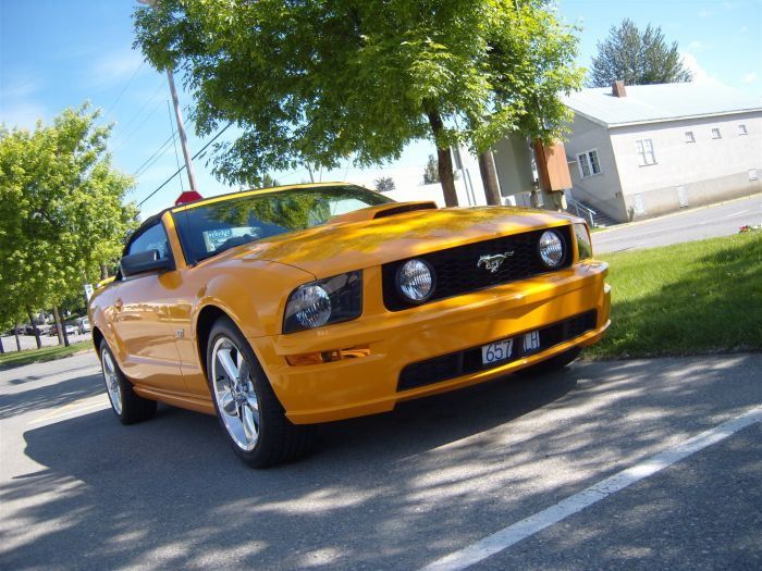 """loulou's dream"", FORD Mustang GT, j'adore!!"