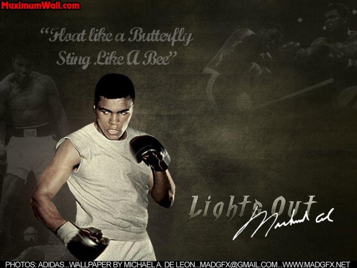 boxe avec la vie
