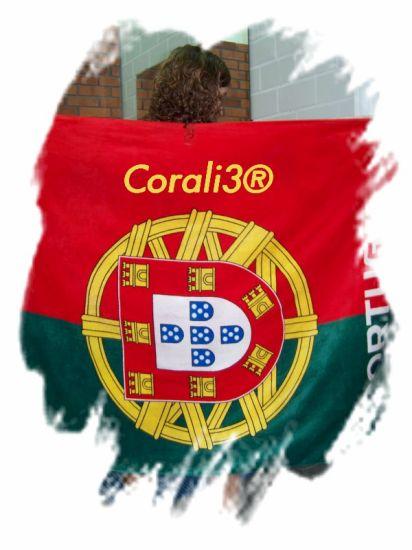 moi en mode PORTUGAL XD