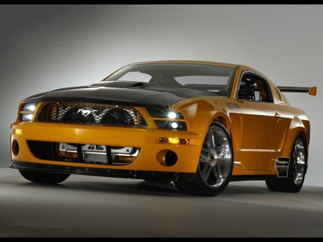 Mustang hum (l)