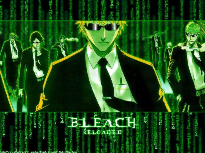 bleach matrix