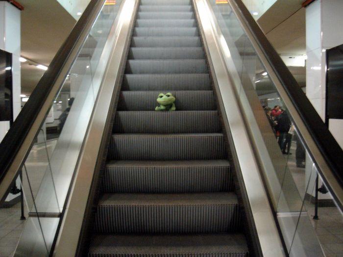 Rabachole et les Escalators