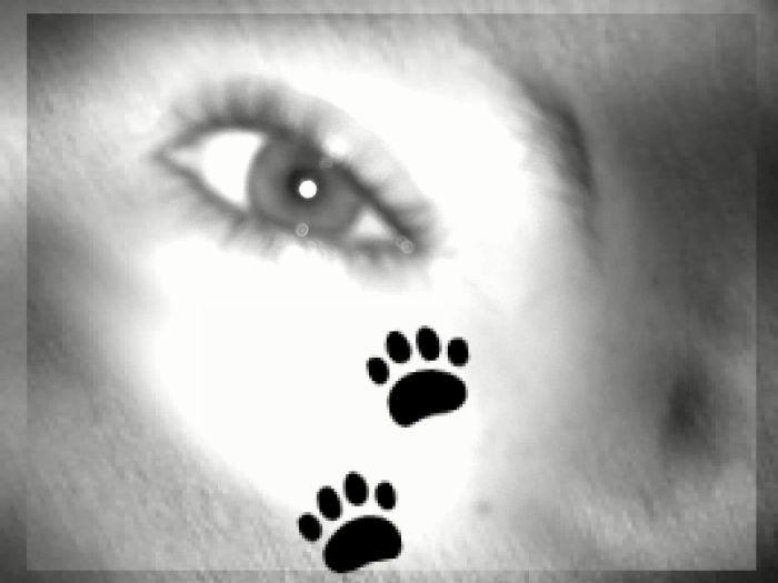 L'oeil du destin
