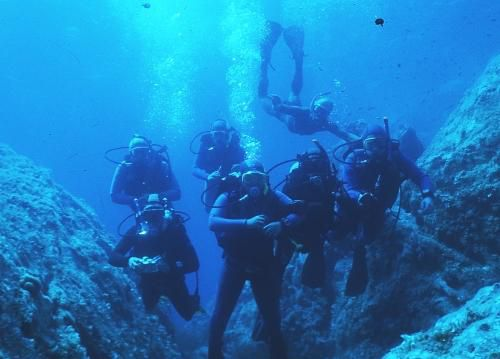 des plongeur comme moi