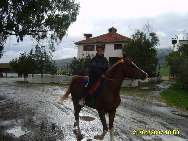 moi au cheval