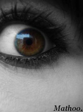 Mon oeil.