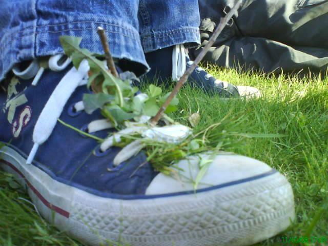 new converse, xd!!