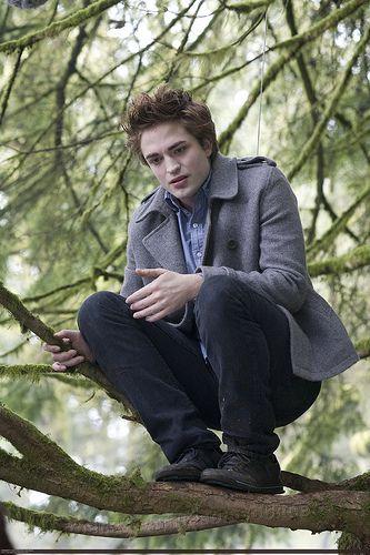 - Edward est quand même plus beau que Tarzan ! -