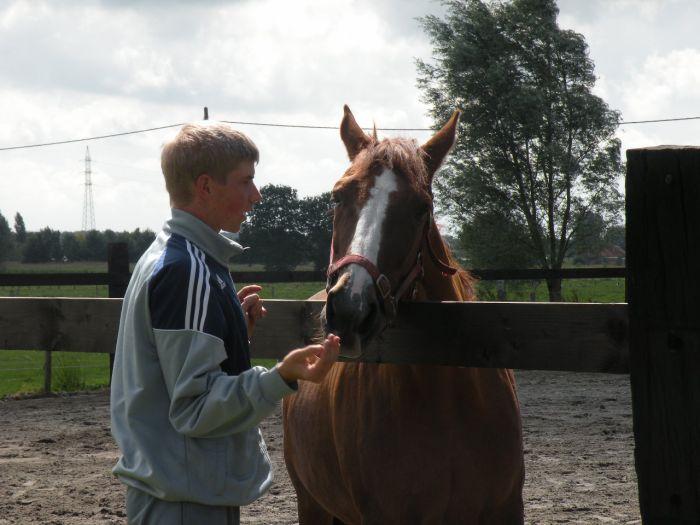 IK en mijn Paard