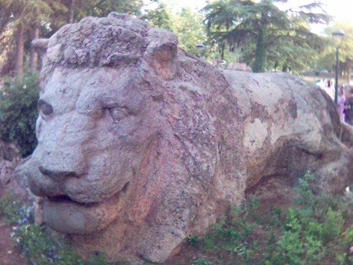 lion de ifrane