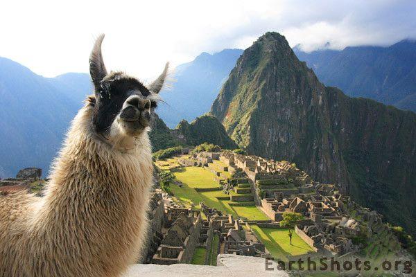 Machu Picchu - Cuzco