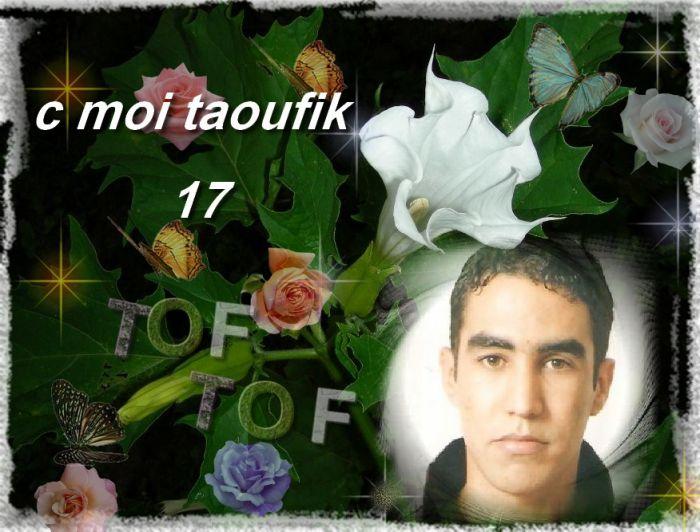 taoufik