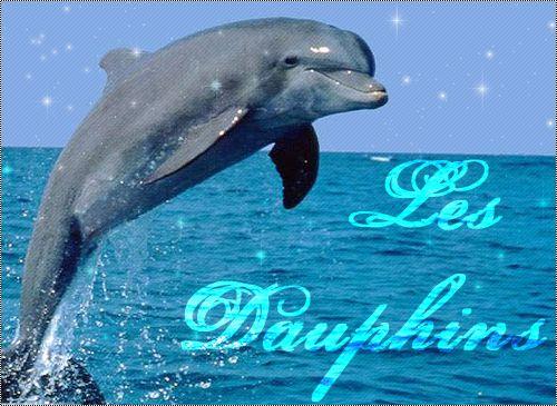Un dauphin qui saute emma2898 - Dessin a imprimer de dauphin ...
