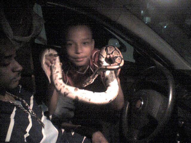 le frangin et billy (serpent)