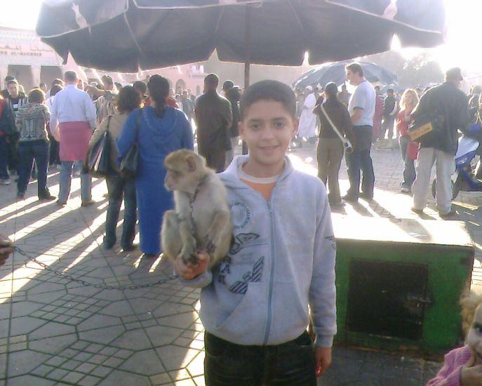 abdelhalim marrakech