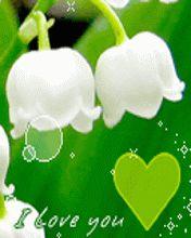 Une fleur, et une pensée d'amour, ce que j'ai pour vous.