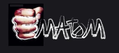 EMATOM 313