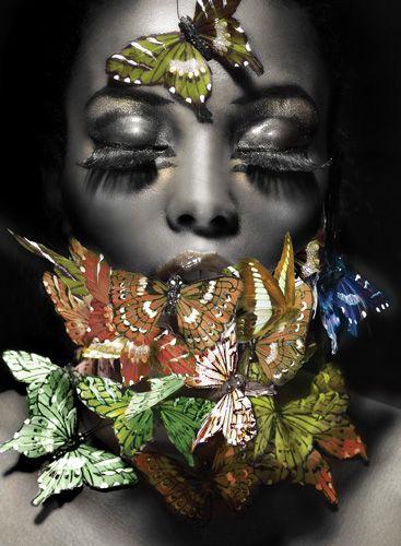papillions la qouceure