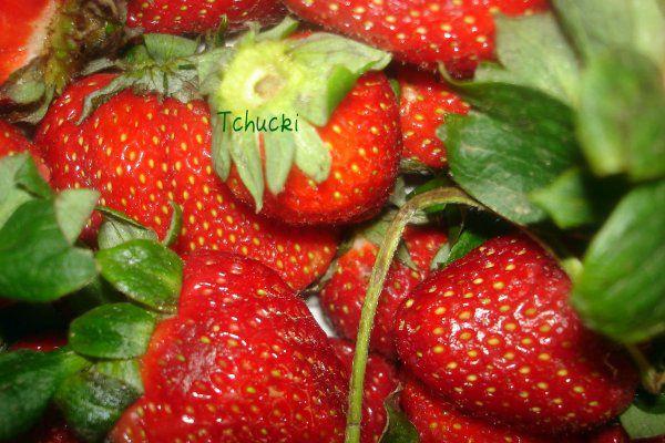 Mes fraises :)