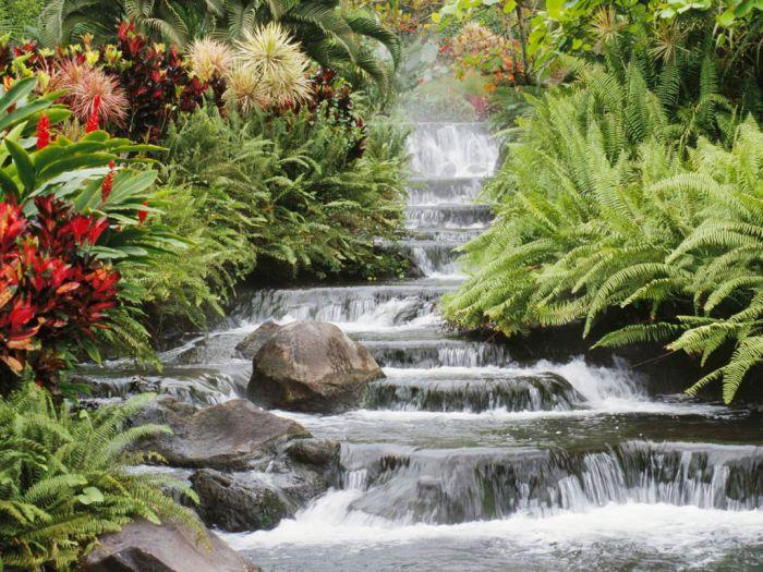 la nature est belle et paisible à regarder.