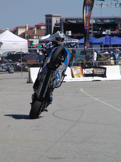 pauly stunt 4