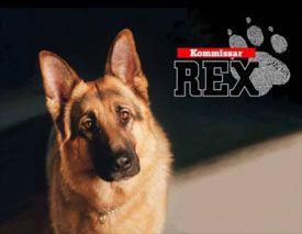 Ma série préférée : Rex,chien flic...