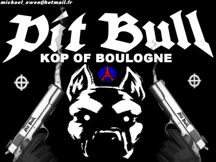 KOP OF BOULOGNE..ICI C LES BOULOGNES BOYS..ALORS ATTENTION !