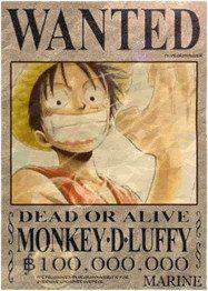 l'avis de recherche de Luffy